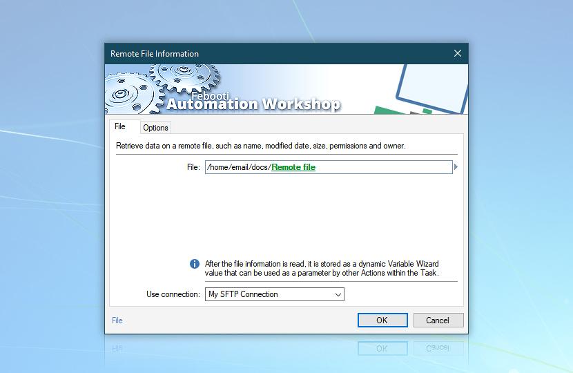 Remote file information · File