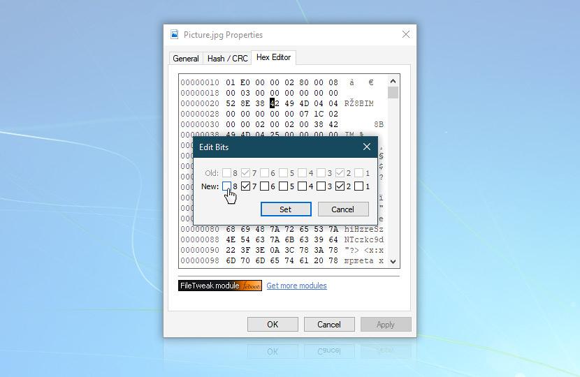 Hex binary edit · FileTweak screenshot